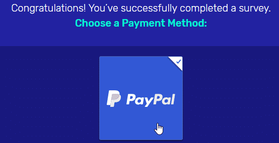 Surveytime payment page